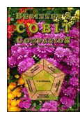 Beginner's COBIT Companion book jacket image